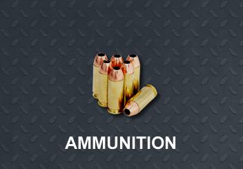cat-ammo-b