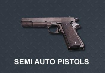 cat-pistols-a
