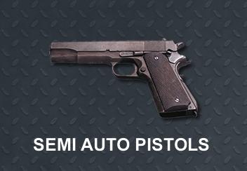 cat-pistols-b